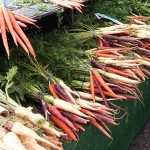 Colorful carrots - Copy
