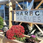 Harbor Harvest on Cove Ave