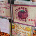 Tomato varities at Riverbank Farm