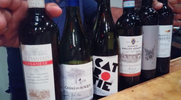 Red wines by the glass at Fat Cat