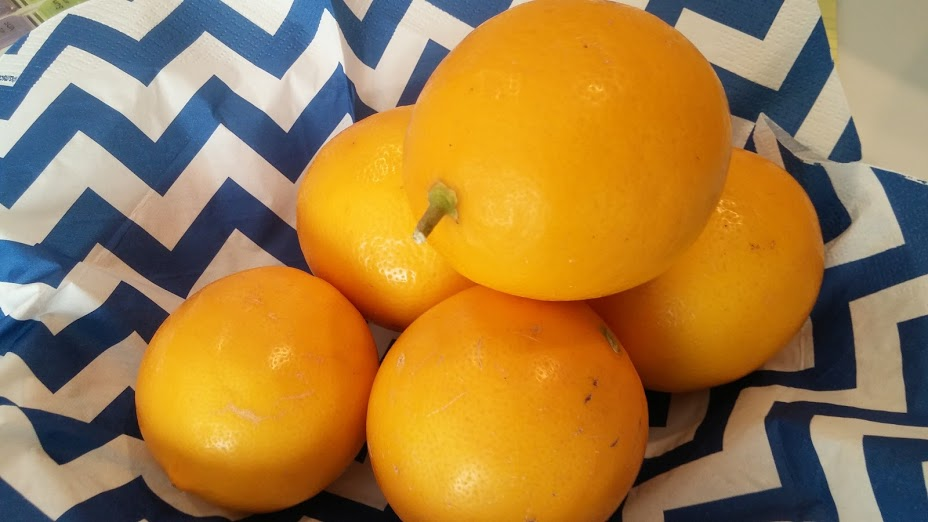 meyer-lemons-from-davids-tree