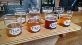 Eight Ithaca beers to sample
