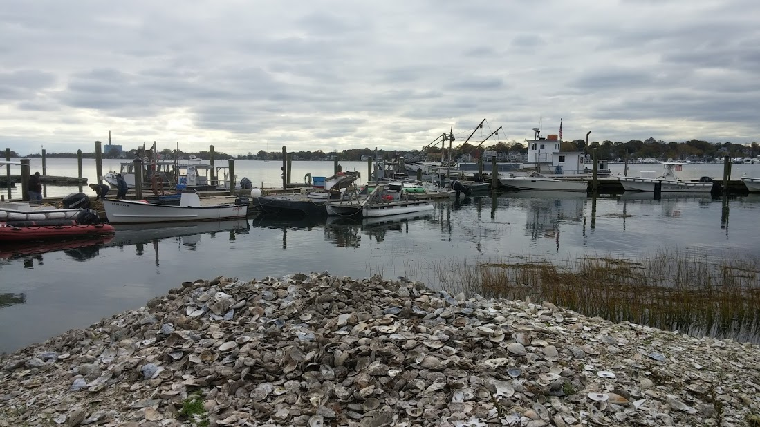 The view at Norm Bloom and Sons oyster dock