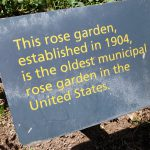 3. Oldest municipal rose garden in the US