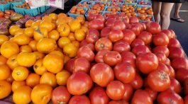 1. Tomatoes from Riverbank Farm at the Westport Farmers Market