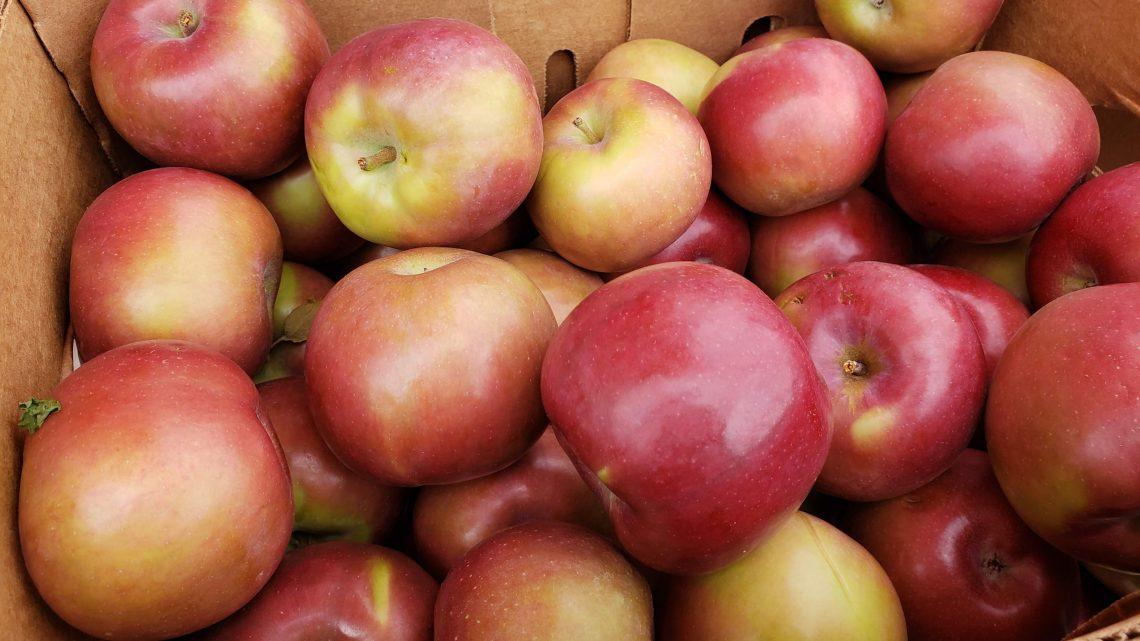 1. Farm Fresh Connecticut Apples