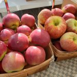 Macintosh and Cortland apples from Woodland Farm