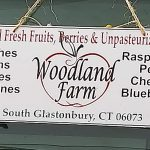 4. Woodland Farm for Connecticut apples